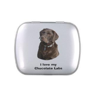 Retrato de la foto del perro de Labrador del Jarrones De Dulces