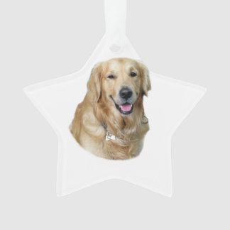 Retrato de la foto del perro del golden retriever