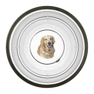 Retrato de la foto del perro del golden retriever cuenco para mascotas