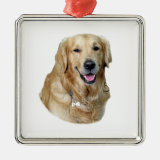 Retrato de la foto del perro del golden retriever adorno cuadrado plateado