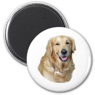 Retrato de la foto del perro del golden retriever imán redondo 5 cm