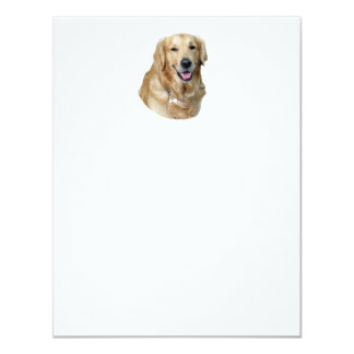 Retrato de la foto del perro del golden retriever invitación 10,8 x 13,9 cm