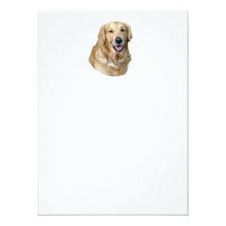 Retrato de la foto del perro del golden retriever invitación 13,9 x 19,0 cm