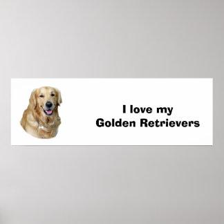 Retrato de la foto del perro del golden retriever posters