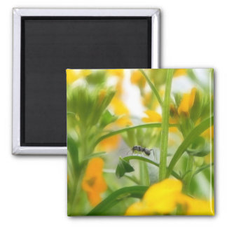Retrato de la hormiga con los Wallflowers siberian Imán Cuadrado
