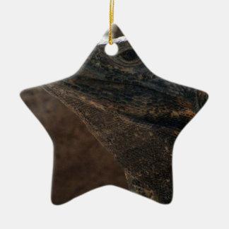 Retrato de la iguana adorno navideño de cerámica en forma de estrella