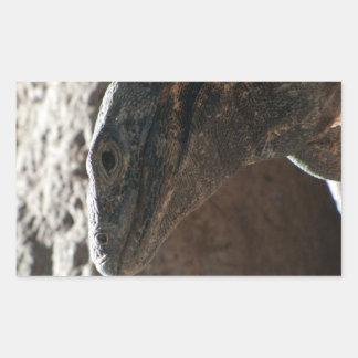Retrato de la iguana pegatina rectangular