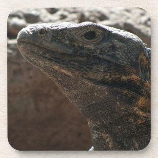 Retrato de la iguana posavaso