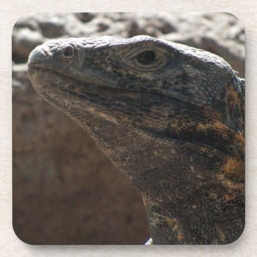Retrato de la iguana posavasos de bebida