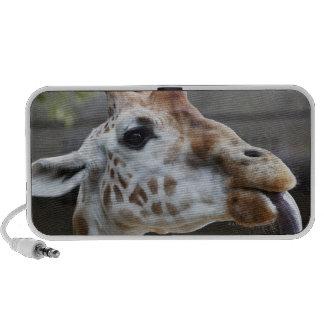 Retrato de la jirafa (camelopardalis del Giraffa) Mini Altavoces