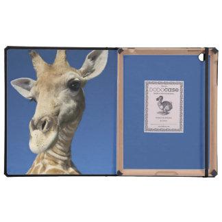 Retrato de la jirafa Giraffa Camelopardalis iPad Protectores