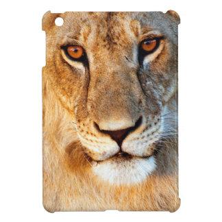 Retrato de la leona (Panthera Leo). Tarangire