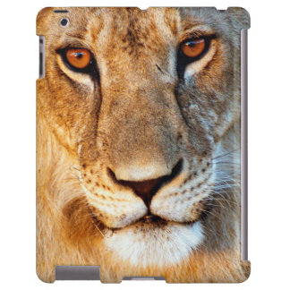 Retrato de la leona (Panthera Leo). Tarangire Funda Para iPad