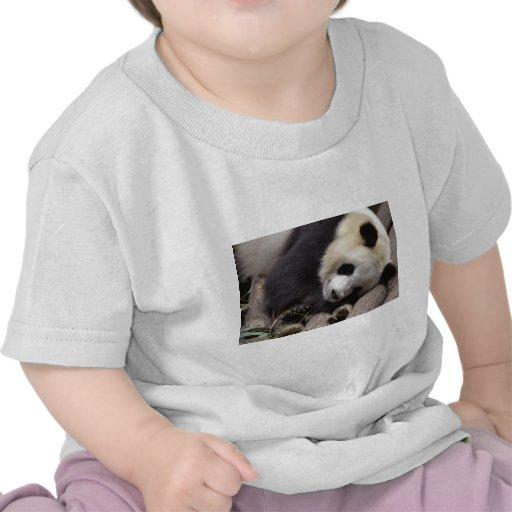 Retrato de la panda gigante camisetas