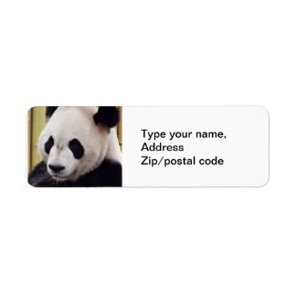 Retrato de la panda gigante etiquetas de remite