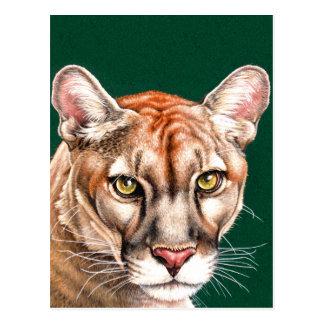 Retrato de la pantera tarjetas postales