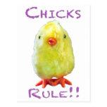 Retrato de la regla de los polluelos transparente postal