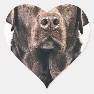 Retrato de Labrador del chocolate Pegatina En Forma De Corazón