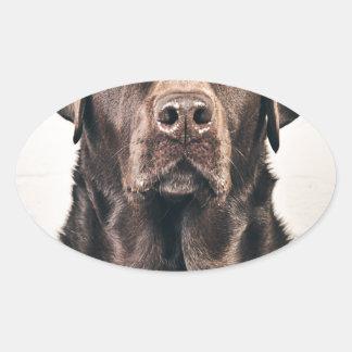Retrato de Labrador del chocolate Pegatina Ovalada