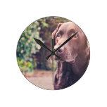 Retrato de Labrador del chocolate Reloj