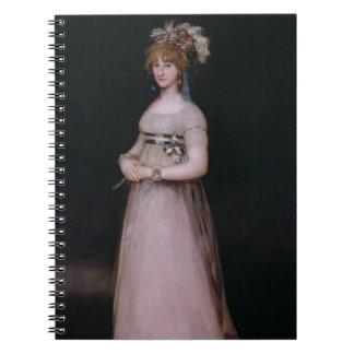 Retrato de Maria Teresa de Borbón y Vallabriga, Cuadernos