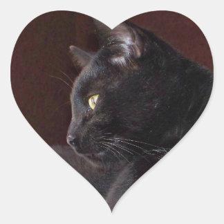 Retrato de mi muchacho, pegatina del corazón de