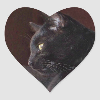 Retrato de mi muchacho pegatina del corazón de Ch
