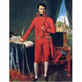 Retrato de Napoleon Bonaparte como primero cónsul, Esculturas Fotograficas