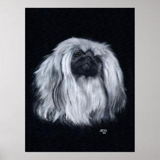 Retrato de Pekingese en negro y blanco Póster