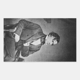 Retrato de presidente Franklin Pierce por M Brady Pegatina Rectangular