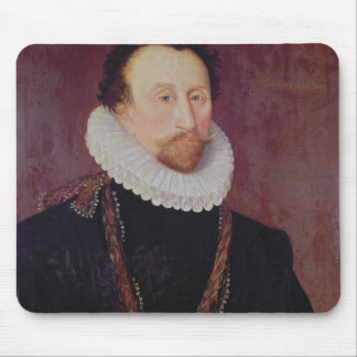 Retrato de sir Juan Hawkins 1581 Tapete De Raton