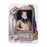 Retrato de sir Philip Sidney (1554-86) de la 'nota Imán Rectangular