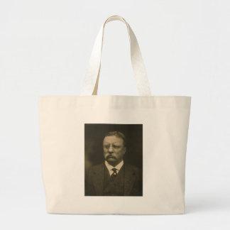 Retrato de Theodore Roosevelt de los hermanos de P Bolsa