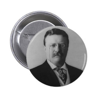 Retrato de Theodore Roosevelt Pins