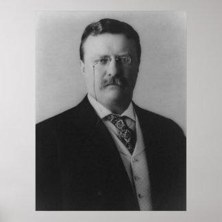 Retrato de Theodore Roosevelt Póster