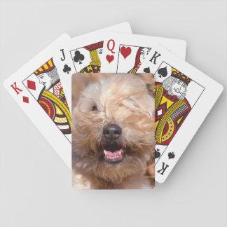 Retrato de trigo suavemente revestido de Terrier Cartas De Juego