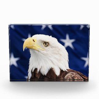 Retrato de un águila calva con la bandera