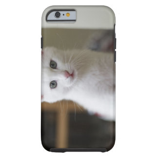 Retrato de un gatito blanco, Suecia Funda Para iPhone 6 Tough