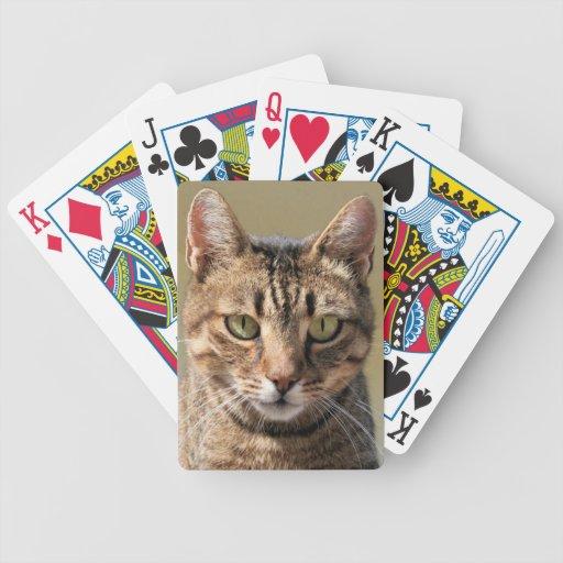 Retrato de un gato de Tabby lindo con el ojo direc Baraja Cartas De Poker