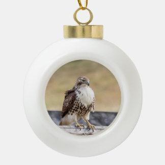 Retrato de un halcón atado rojo no maduro adorno de cerámica en forma de bola