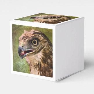 Retrato de un halcón cajas para regalos