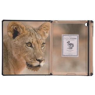 Retrato de un león masculino joven (Panthera Leo) iPad Cárcasa