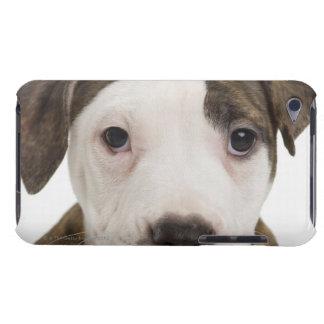 Retrato de un perrito del pitbull barely there iPod cárcasas
