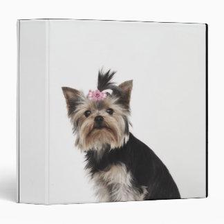 """Retrato de un perro de Yorkshire Terrier Carpeta 1 1/2"""""""