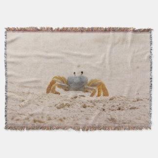 Retrato de un tiro de la manta del cangrejo del