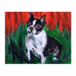 Retrato de una Boston Terrier Tarjeta Postal