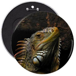 Retrato de una iguana pin