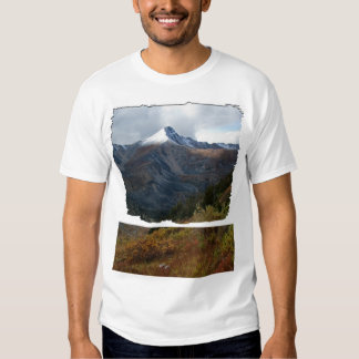 Retrato de una montaña remeras