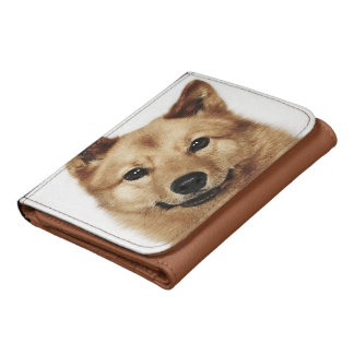 Retrato de una sonrisa finlandesa del perro del pe