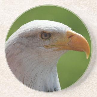 Retrato del águila calva posavasos cerveza